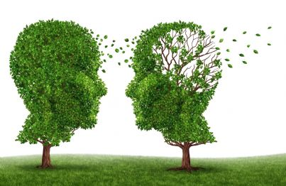 due alberi che si sfogliano concetto alzheimer