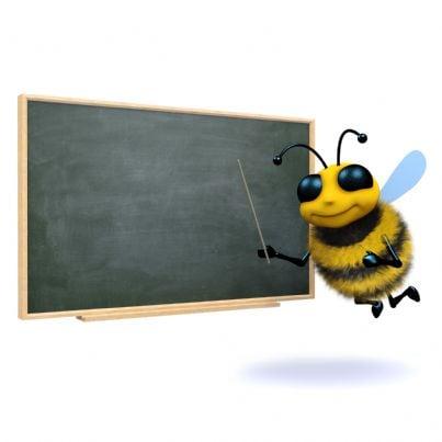 ape con bacchetta indica lavagna concetto pensione
