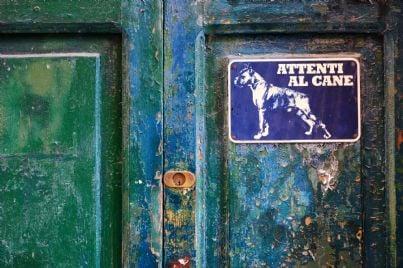 cartello attenti al cane su una vecchia porta