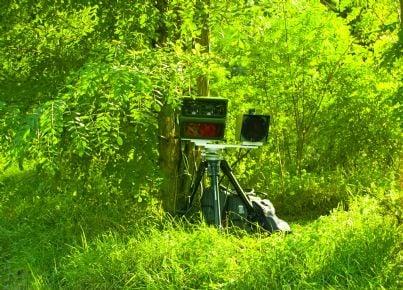 autovelox nascosto tra gli alberi