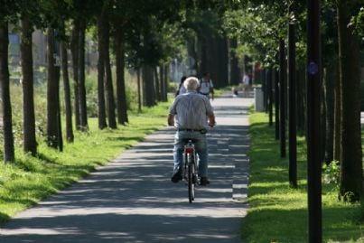 bicicletta2 id11056