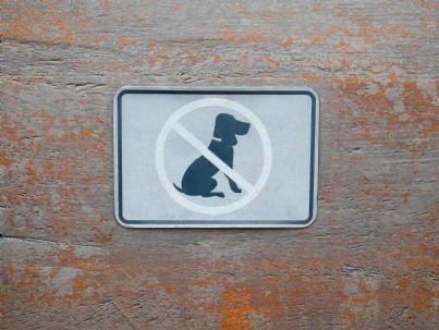 cartello vietato ingresso ai cani