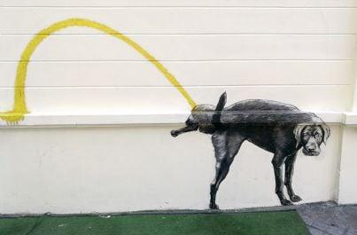cane che fa pipi contro un muro