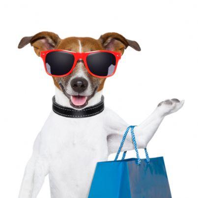 Cane animali supermercato