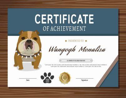 cane con certificato