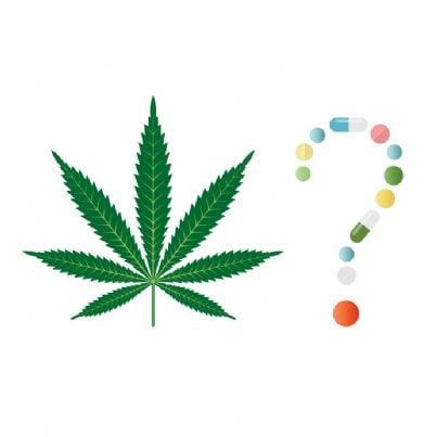 foglia di cannabis con punto interrogativo