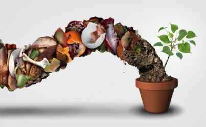 come fare compost domestico