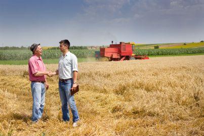 due contadini si stringono la mano su un terreno
