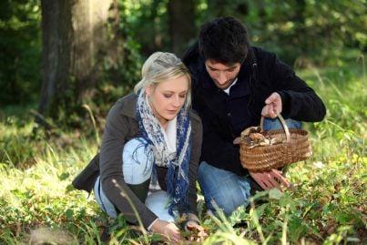 coppia che raccoglie funghi nel bosco