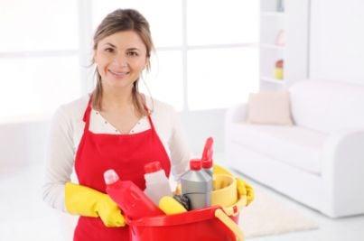 lavoro casalinga colf domestica