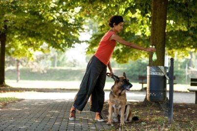 donna che getta escrementi del suo cane nel cestino