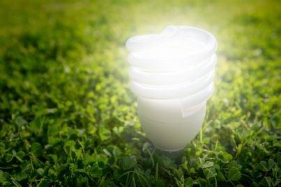 lampadina su prato verde