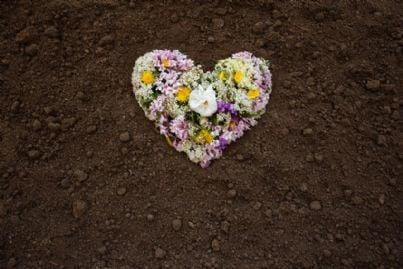 fiori a forma di cuore su terreno