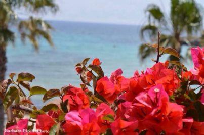 Foto di un panorama sul mare