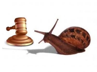 Una lumaca vicino a un martello simbolo del potere giudiziario