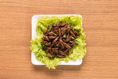 piatto di insetti fritti