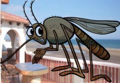 Casa sul mare con in sovrimpressione il disegno di una zanzara
