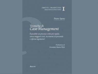 tecniche gestione processo civile
