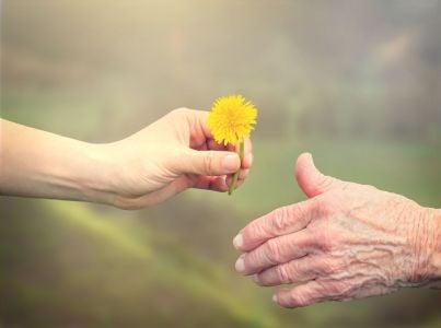 mano da fiore ad altra mano concetto aiuto