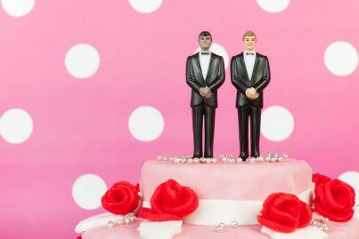 torta rosa per matrimonio gay