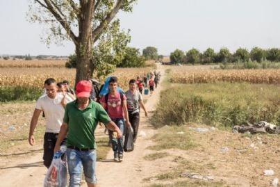 esodo di migranti che camminano tra i campi