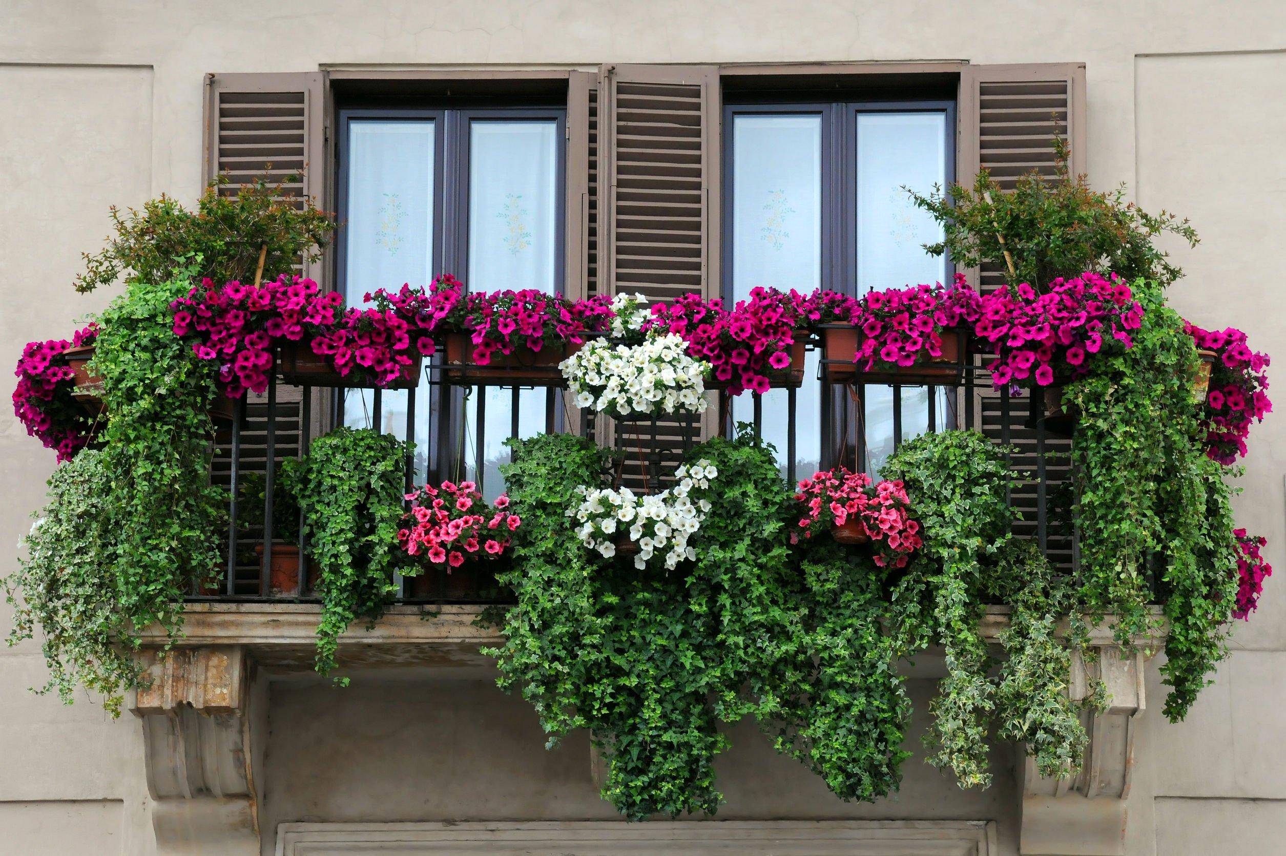 Balconi Esterni Condominio : Condominio i rivestimenti decorativi di fioriere balconi e