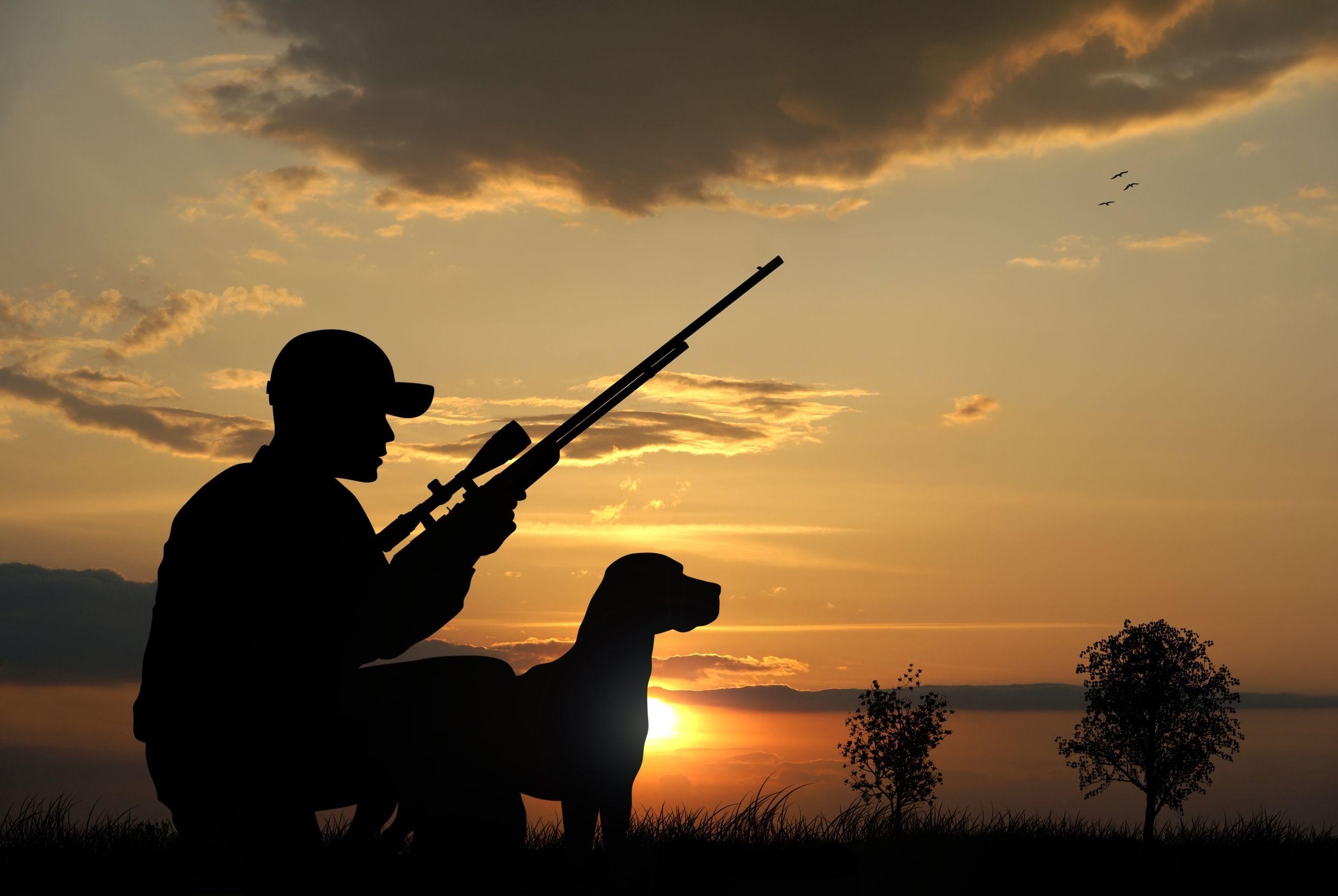 Armi revoca della licenza uso caccia e sostanze stupefacenti for Costo della costruzione del fucile da caccia