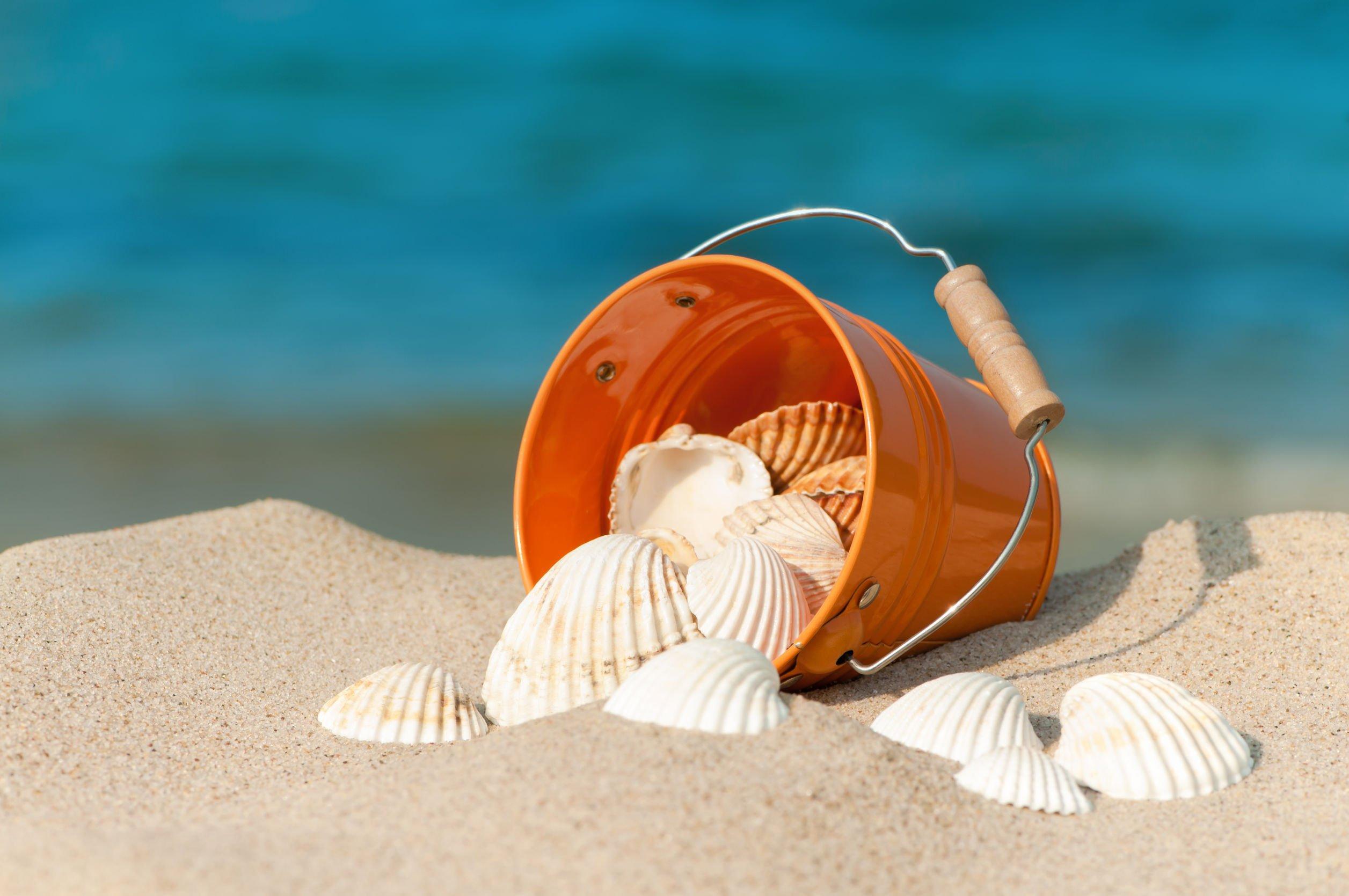 Sabbia e conchiglie per ricordo si rischia una multa salata - Immagini di spongebob e sabbia ...