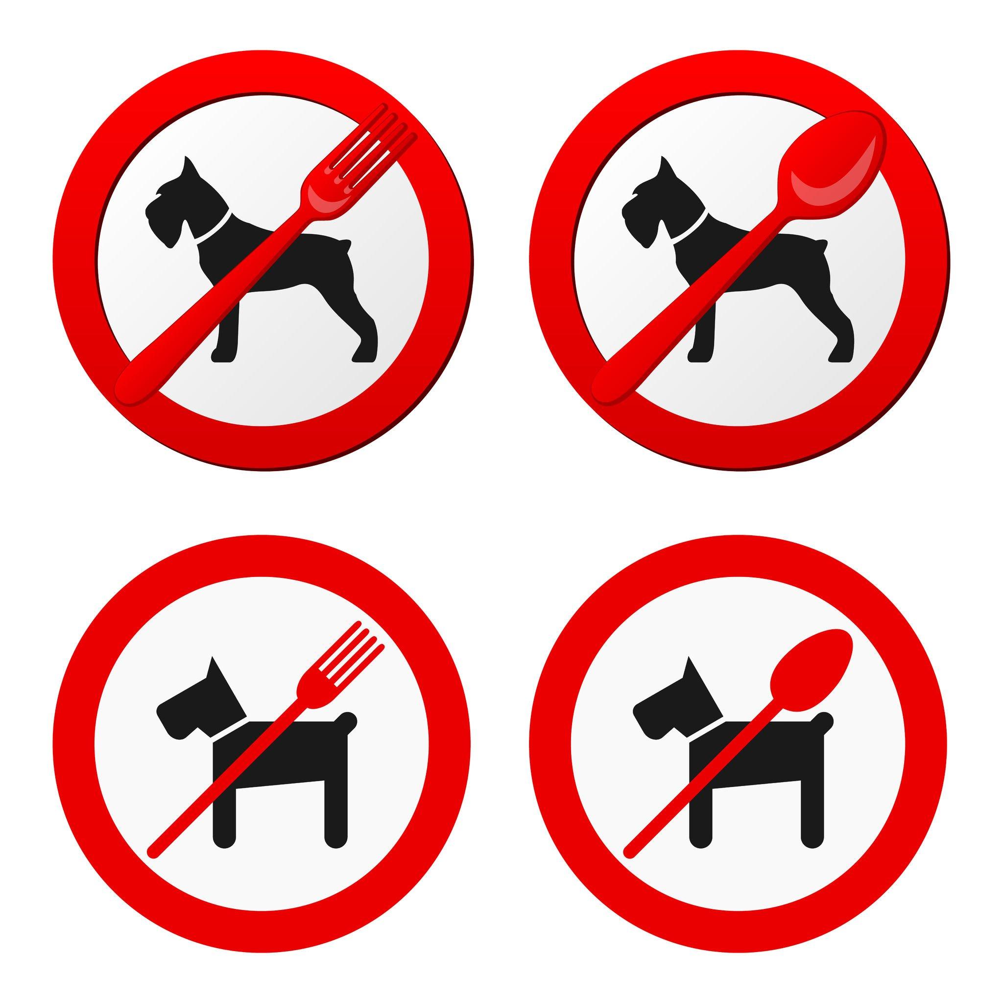 Bar e ristoranti legittimo vietare l 39 ingresso a fido - Norme igienico sanitarie per le cucine di ristoranti ...