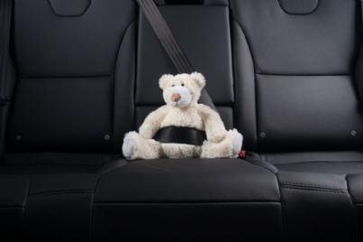 orsacchiotto con cintura di sicurezza in auto
