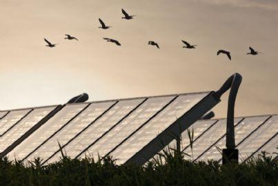 pannelli solari in condominio