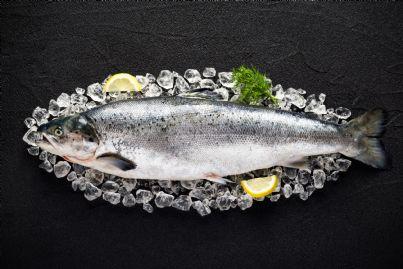 pesce surgelato nel piatto