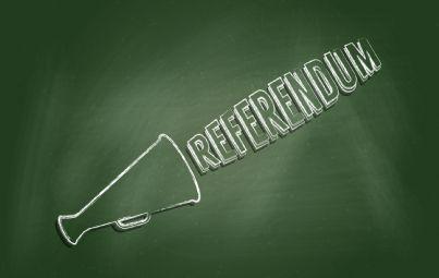 parola referendum su sfondo verde