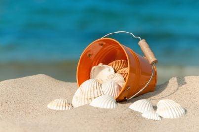secchiello con conchiglie sulla sabbia