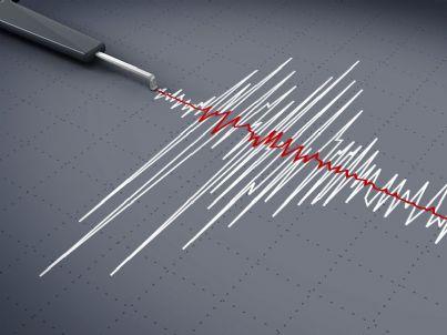 grafico che segna scossa di terremoto