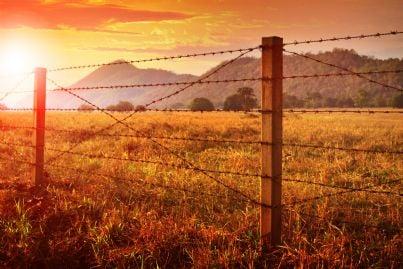 terreno agricolo con recinto