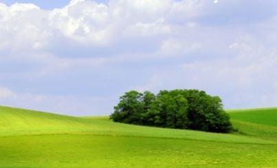 terreni campagna