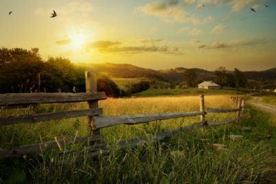 un paesaggio rurale