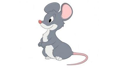 topo animali
