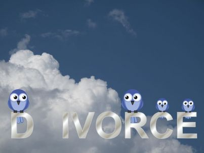 famiglia di uccelli su un ramo spezzato e parola divorzio