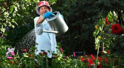 uomo che innaffia piante in giardino