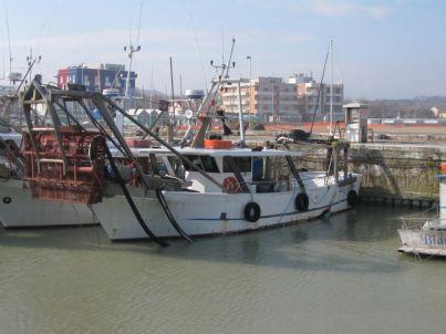 una vongolara nel porto di Fano